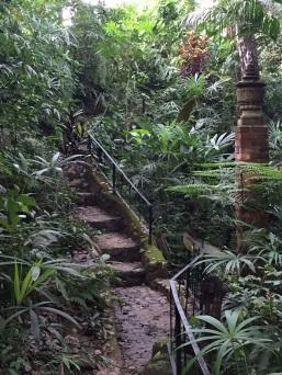 Puerto Vallarta Botanical Gardens—magical!