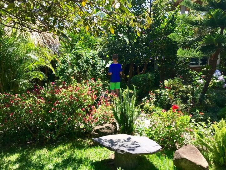 Gardens at Cooperativa Spanish School in San Pedro La Laguna, Guatemala