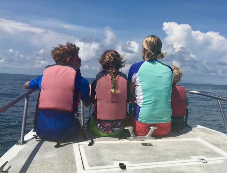 Seafari with Sámara Adventure Company