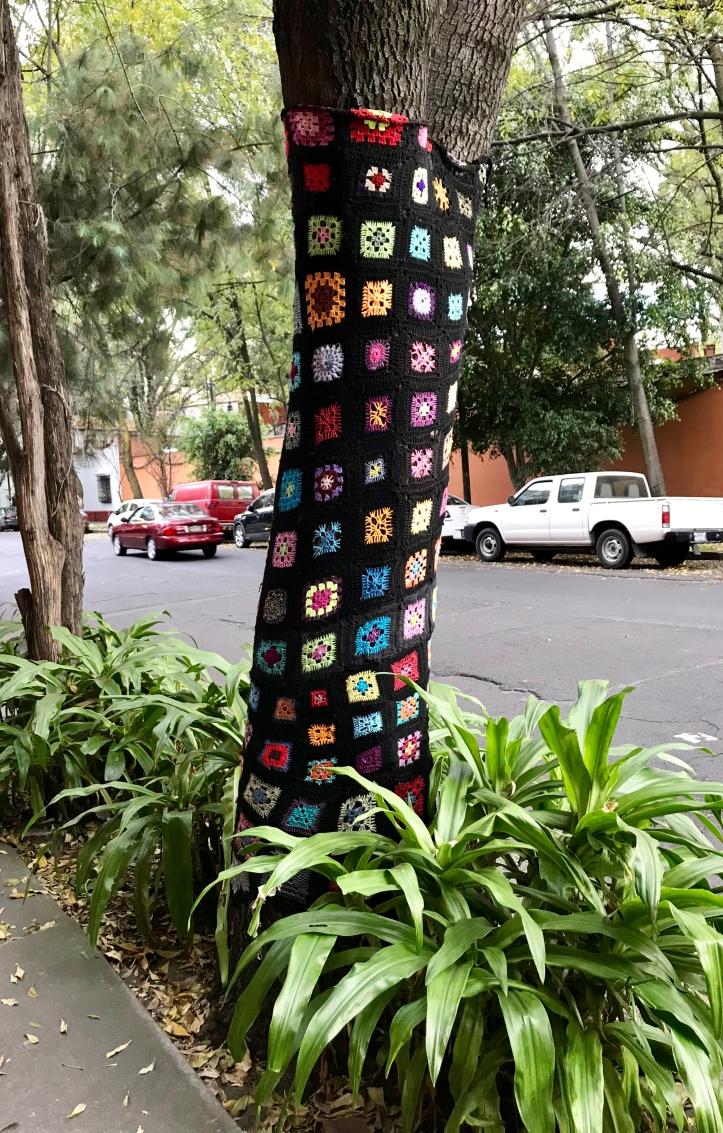 Yarn bombed tree in Mexico City